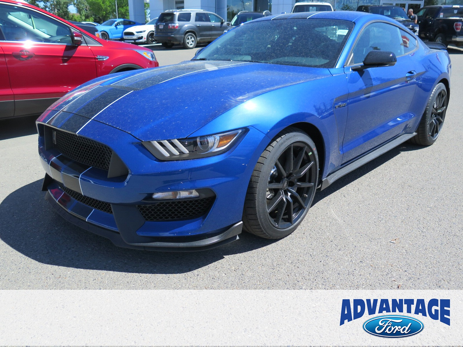 2017 Ford Shelby GT350 Base (Stk: H-1165) in Calgary - Image 1 of 5