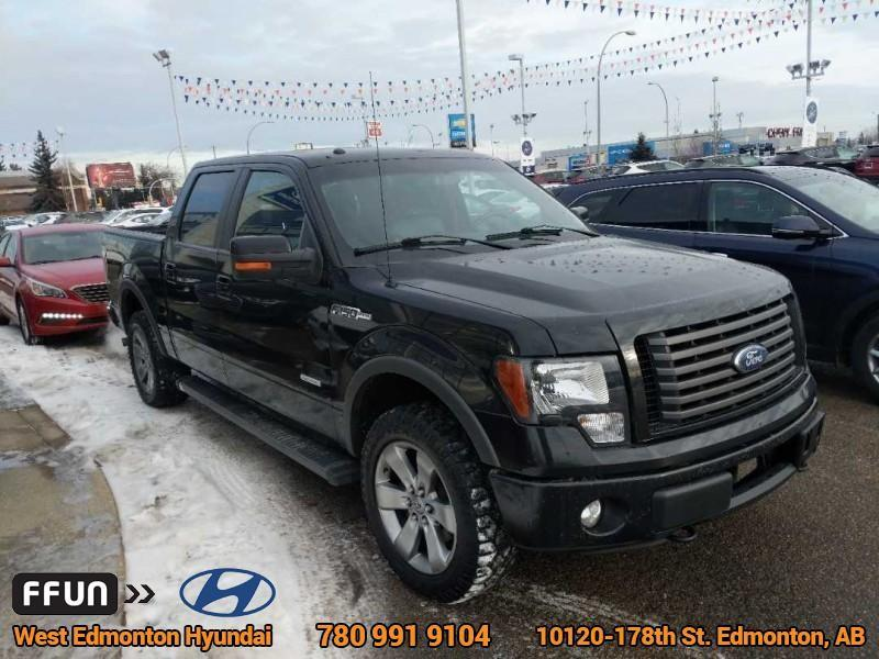 2012 Ford F-150 FX4 (Stk: P0380) in Edmonton - Image 4 of 20