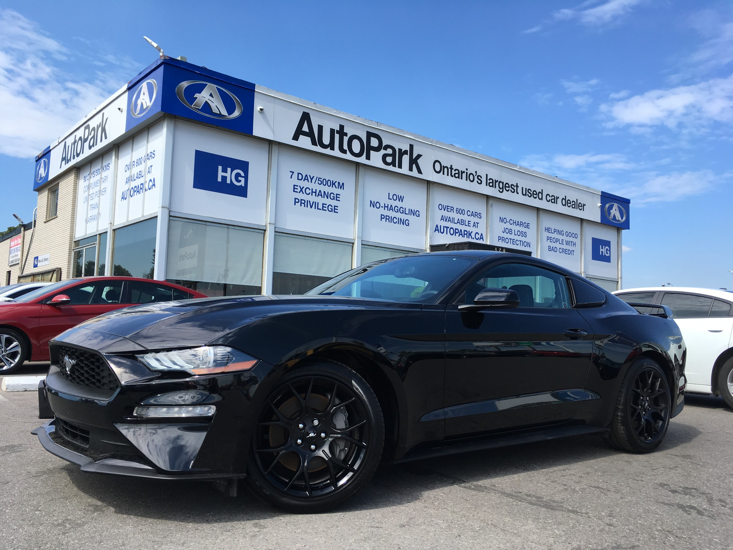Used Ford Mustang For Sale Kitchener, ON - CarGurus