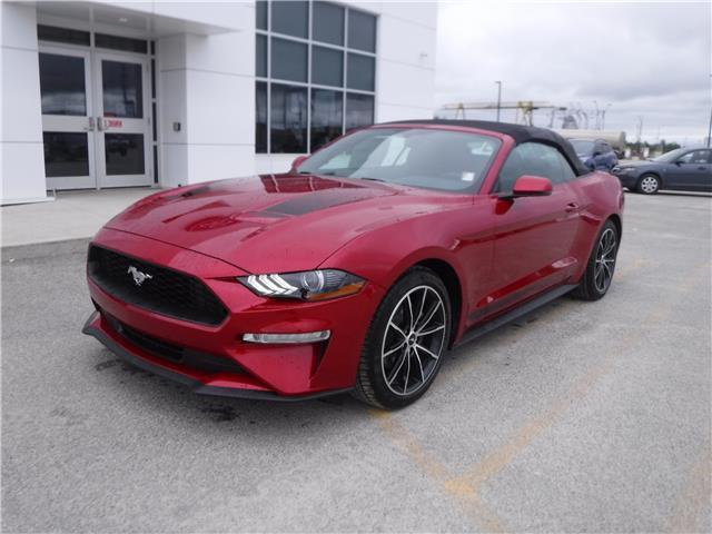 2020 Ford Mustang EcoBoost Premium (Stk: 20-198) in Kapuskasing - Image 1 of 7