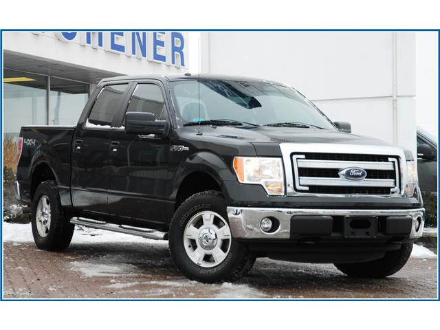 2014 Ford F-150 XLT (Stk: 8F8530A) in Kitchener - Image 1 of 17