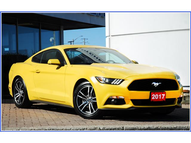 2017 Ford Mustang EcoBoost (Stk: 147340) in Kitchener - Image 1 of 15
