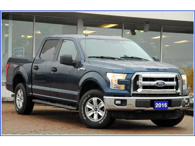 2016 Ford F-150 XLT (Stk: 9F3700A) in Kitchener - Image 1 of 16
