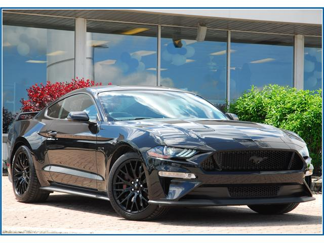 2019 Ford Mustang GT Premium (Stk: 9F4860B) in Kitchener - Image 1 of 17