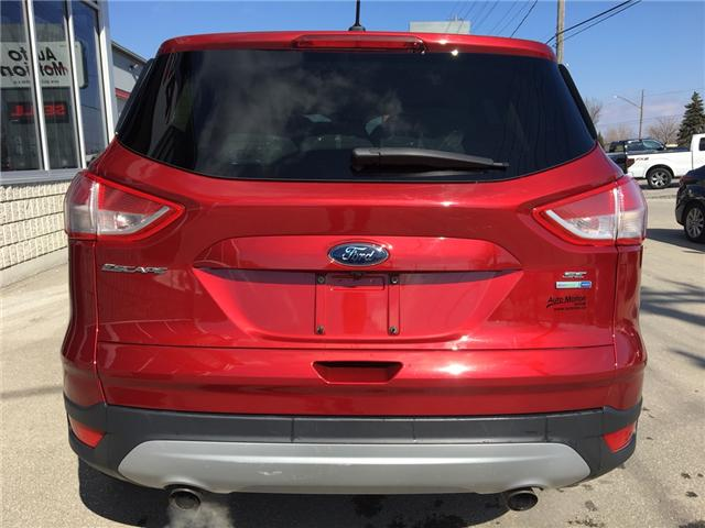 2015 Ford Escape SE (Stk: 19196) in Chatham - Image 5 of 20