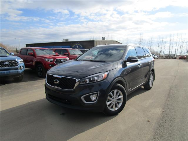 2017 Kia Sorento 3.3L LX V6 7-Seater (Stk: 1891403) in Moose Jaw - Image 1 of 35