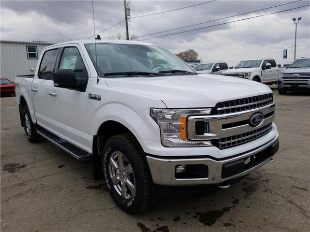 2019 Ford F-150 XLT (Stk: 9262) in Wilkie - Image 1 of 23