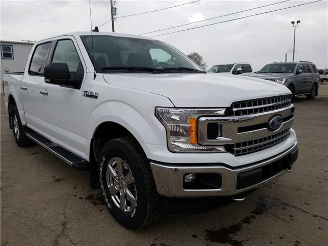 2019 Ford F-150 XLT (Stk: 9245) in Wilkie - Image 1 of 21