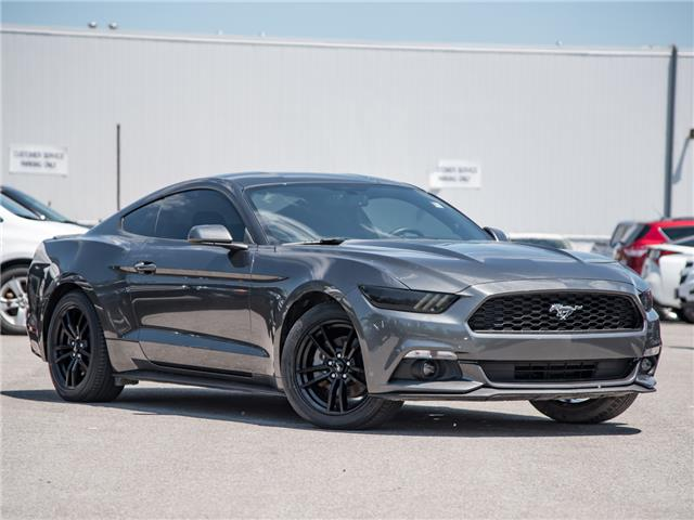 2016 Ford Mustang EcoBoost (Stk: 19MU404T) in St. Catharines - Image 1 of 23