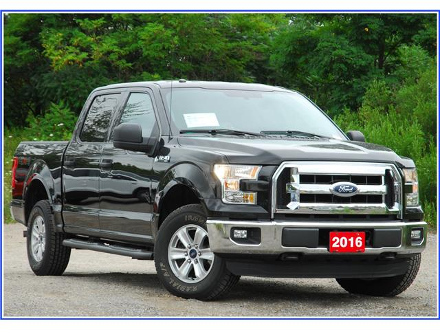 2016 Ford F-150 XLT (Stk: D94910A) in Kitchener - Image 1 of 16