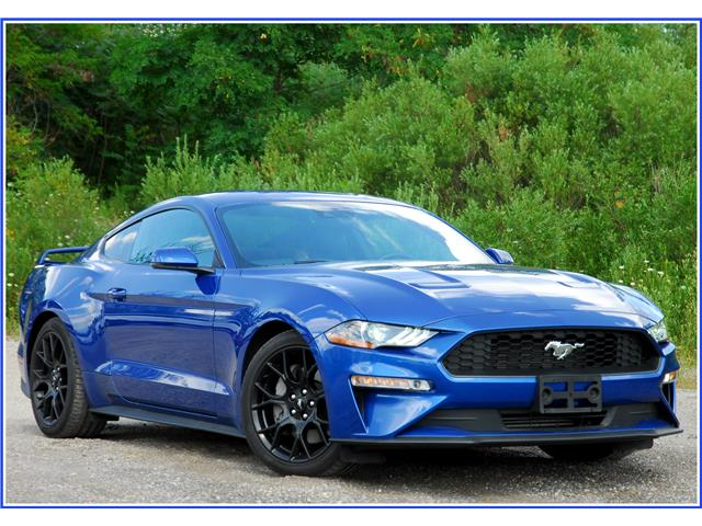 2018 Ford Mustang EcoBoost Premium (Stk: 148540) in Kitchener - Image 1 of 17