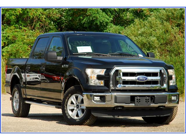 2016 Ford F-150 XLT (Stk: 9F3950AX) in Kitchener - Image 1 of 18