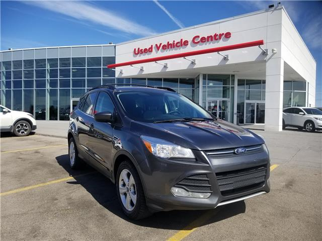 2016 Ford Escape SE (Stk: U194304) in Calgary - Image 1 of 24