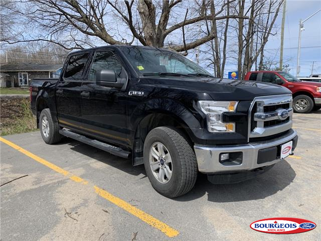 2016 Ford F-150 XLT (Stk: 19T900A) in Midland - Image 1 of 3
