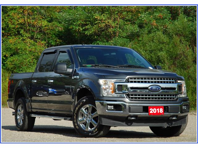 2018 Ford F-150 XLT (Stk: 9P1300A) in Kitchener - Image 1 of 19
