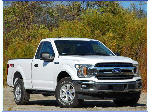 2019 Ford F-150 XLT (Stk: 9F9360A) in Kitchener - Image 1 of 17