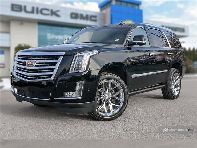 2019 Cadillac Escalade Platinum (Stk: P191055) in Vernon - Image 1 of 25