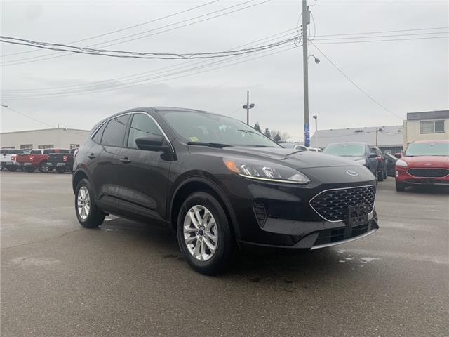 2020 Ford Escape SE (Stk: 20T207) in Quesnel - Image 1 of 15