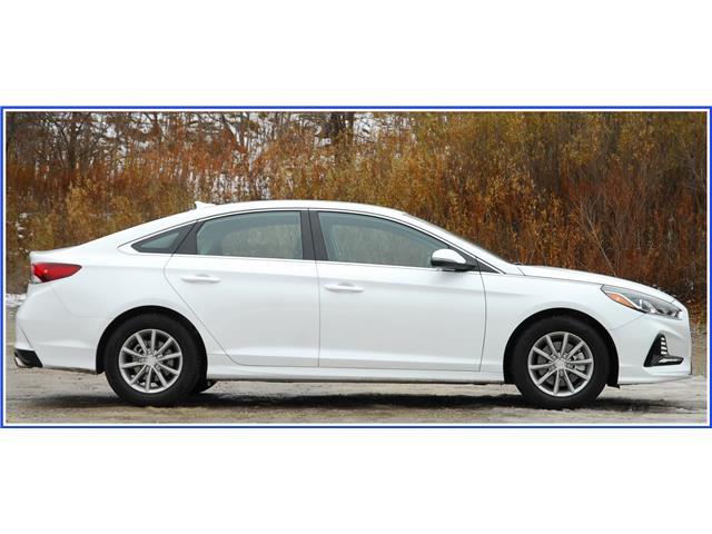 2019 Hyundai Sonata ESSENTIAL (Stk: OP3924R) in Kitchener - Image 2 of 16