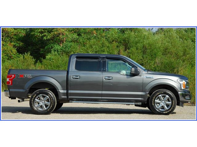 2018 Ford F-150 XLT (Stk: 9P1300A) in Kitchener - Image 2 of 19