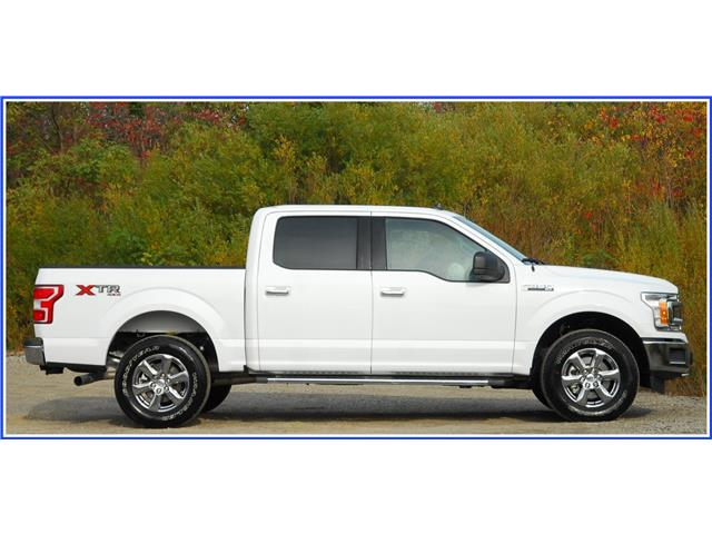 2019 Ford F-150 XLT (Stk: D95780B) in Kitchener - Image 2 of 18