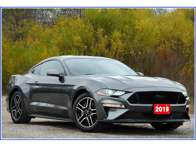 2019 Ford Mustang GT Premium (Stk: 150350) in Kitchener - Image 1 of 16
