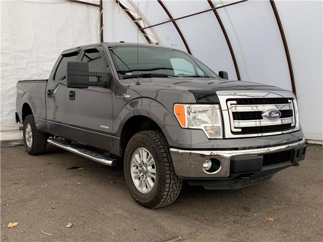 2014 Ford F-150 XLT (Stk: D200168A) in Ottawa - Image 1 of 30