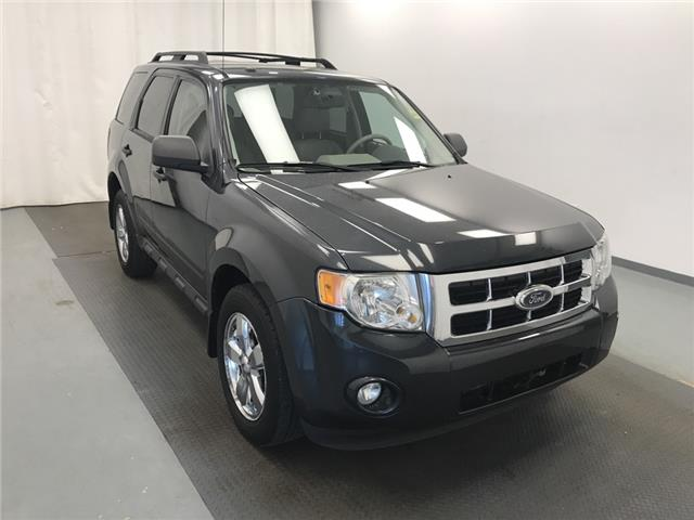 2009 Ford Escape XLT Automatic 1FMCU93G79KA11444 210630 in Lethbridge
