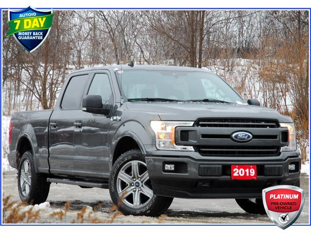 2019 Ford F-150 XLT (Stk: D97450A) in Kitchener - Image 1 of 19