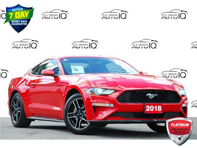 2018 Ford Mustang EcoBoost Premium (Stk: 153260) in Kitchener - Image 1 of 19