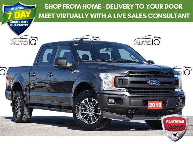 2019 Ford F-150 XLT (Stk: 21F0050A) in Kitchener - Image 1 of 24