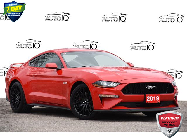 2019 Ford Mustang GT (Stk: 156430) in Kitchener - Image 1 of 24
