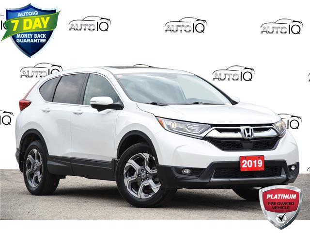 2019 Honda CR-V EX-L (Stk: 156940) in Kitchener - Image 1 of 22