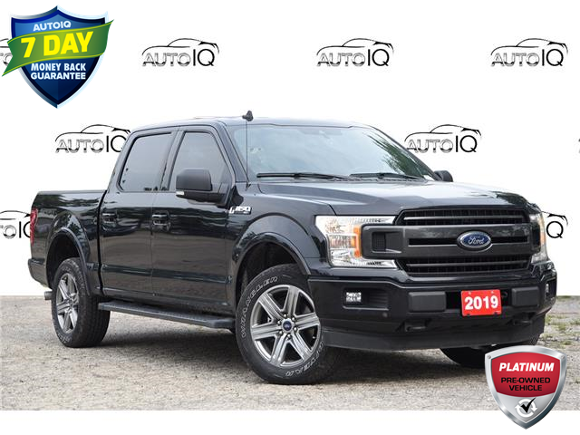 2019 Ford F-150 XLT (Stk: 21F3440A) in Kitchener - Image 1 of 23