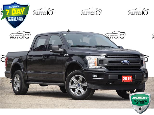 2019 Ford F-150 XLT (Stk: 21F1830AX) in Kitchener - Image 1 of 24
