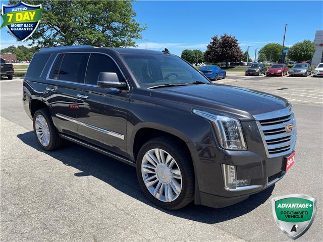 2015 Cadillac Escalade Platinum (Stk: 157590X) in Kitchener - Image 1 of 4