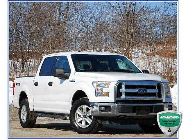 2015 Ford F-150 XLT (Stk: 59641A) in Kitchener - Image 1 of 17