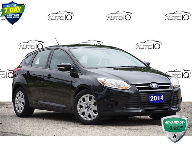 2014 Ford Focus SE (Stk: 60804A) in Kitchener - Image 1 of 18