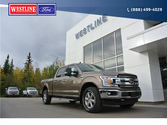 2019 Ford F-150 XLT (Stk: 4199) in Vanderhoof - Image 1 of 24