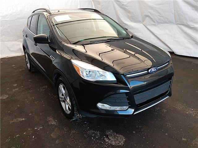 2015 Ford Escape SE (Stk: IU1782) in Thunder Bay - Image 1 of 19