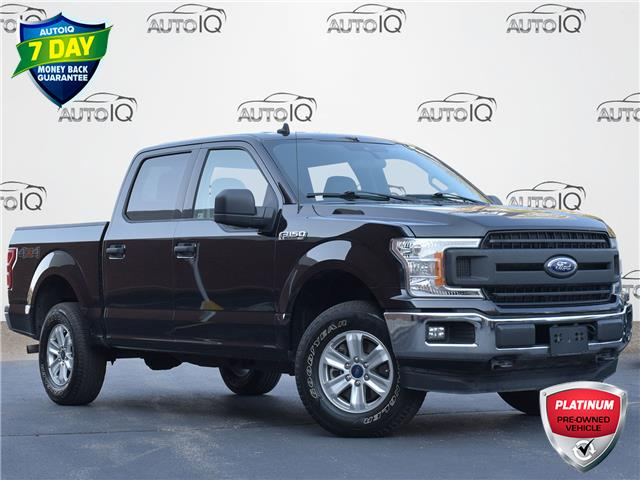 2019 Ford F-150 XLT (Stk: FB917A) in Waterloo - Image 1 of 16