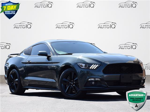 2015 Ford Mustang EcoBoost (Stk: MC609A) in Waterloo - Image 1 of 18