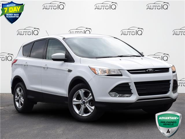 2014 Ford Escape SE (Stk: MC649A) in Waterloo - Image 1 of 18