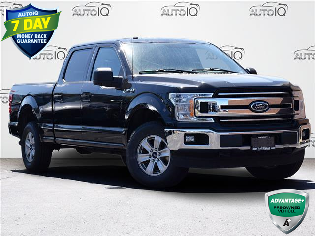 2018 Ford F-150 XLT (Stk: FC515A) in Waterloo - Image 1 of 18