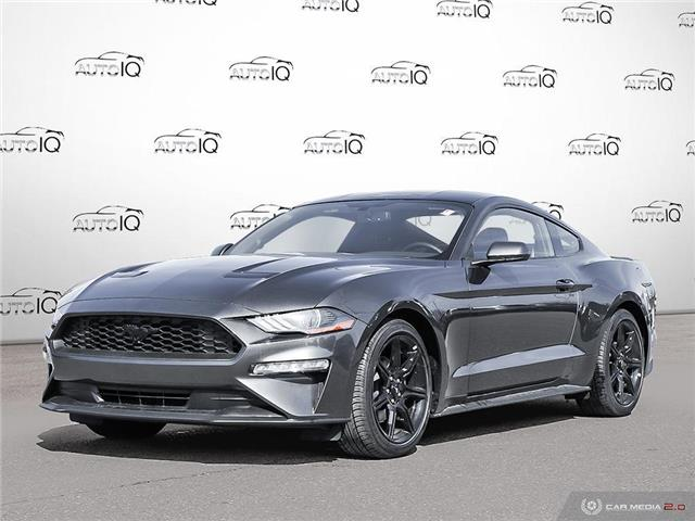 2019 Ford Mustang EcoBoost (Stk: 9G024) in Oakville - Image 1 of 21