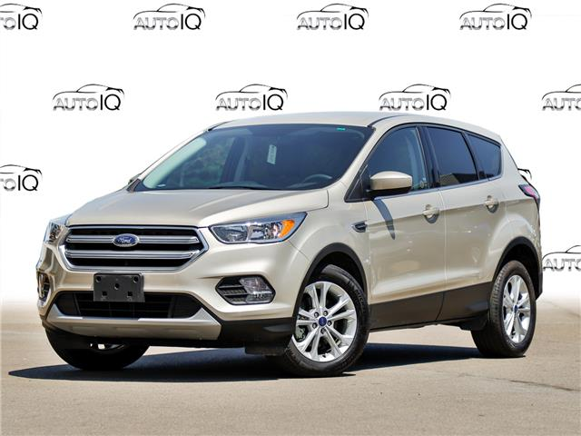 2017 Ford Escape SE (Stk: 1HL310) in Hamilton - Image 1 of 20