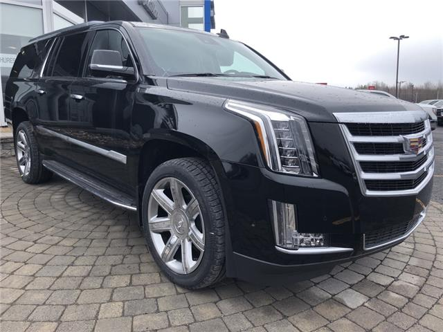 2020 Cadillac Escalade ESV Luxury (Stk: 20087) in Cornwall - Image 1 of 1