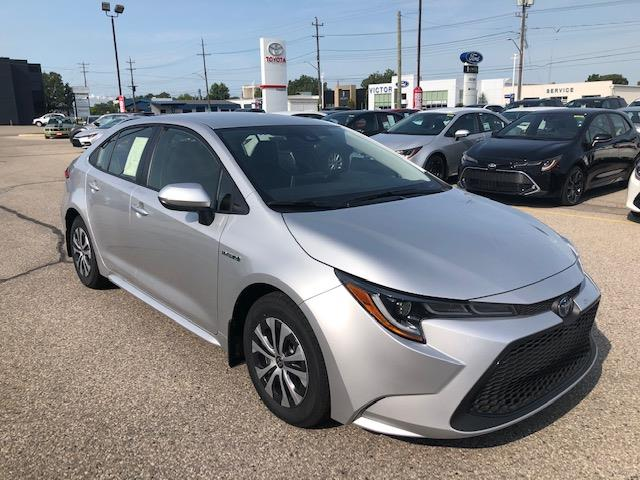 2021 Toyota Corolla Hybrid Base w/Li Battery (Stk: 42293) in Chatham - Image 1 of 7