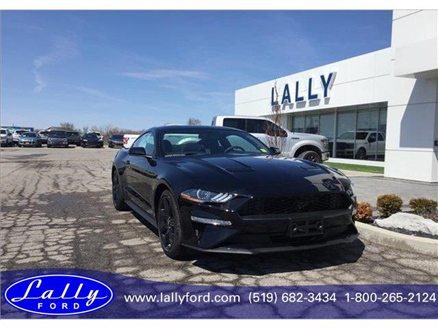 2019 Ford Mustang EcoBoost (Stk: MU25192) in Tilbury - Image 1 of 7