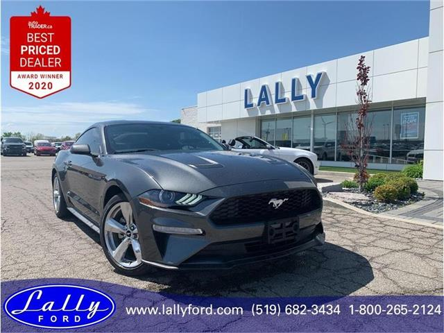 2019 Ford Mustang  (Stk: 3098) in Tilbury - Image 1 of 17